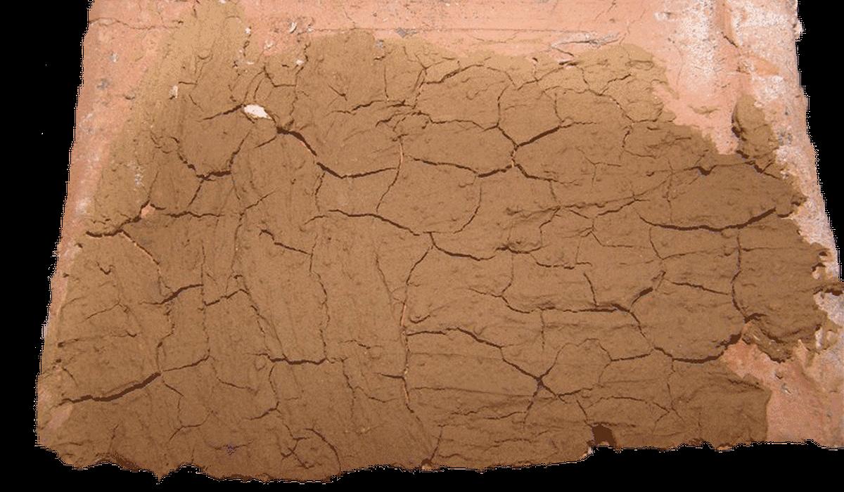 тощие глины